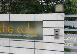 The Cotz - Property For Rent in Singapore