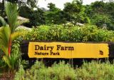 The Dairy Farm - Property For Sale in Singapore