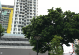 One Dusun Residences - Property For Rent in Singapore