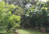 Kovan - Property For Sale in Singapore
