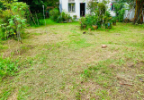 Good to Sub-divide or Rebuild with Flat Land - Property For Sale in Singapore