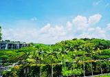 Freehold Lifestyle Corner Terrace, Water-Catchment View - Property For Sale in Singapore