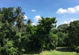 Mandai estate landed - Property For Sale in Singapore