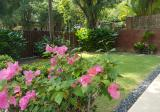 Greenleaf Area Bungalow - Property For Sale in Singapore