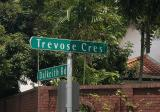 2 STOREY BUNGLAOW FOR SALE @ TREVOSE CRESCENT , ABLE TO SUBDIVIDE INTO 2 PLOT - Property For Sale in Singapore