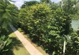 Rivertrees Residences - Property For Sale in Singapore