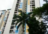 110 Spottiswoode Park Road - HDB for rent in Singapore