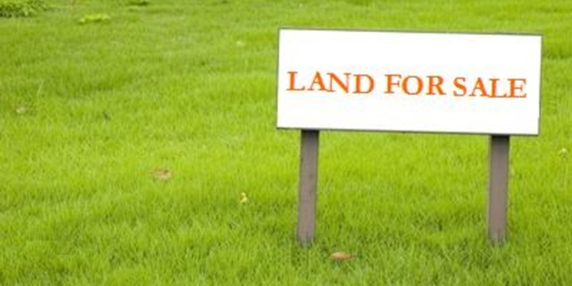 Land for sale-crop