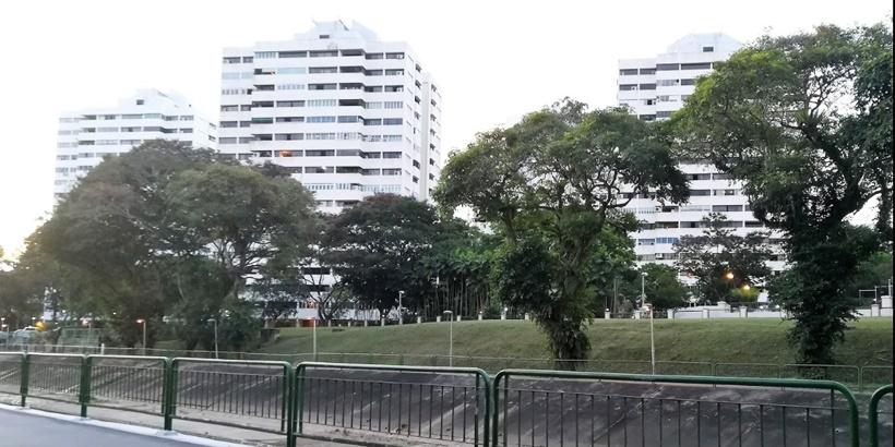 Pine Grove condominium