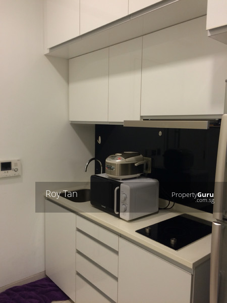 Green line mrt 1 bedroom studio apartment for rent 1 bedroom 377 sqft condominiums for 2 bedroom apartment for rent in singapore