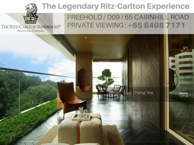 The Ritz Carlton Residences #93992411