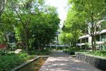 Varsity Park Condominium