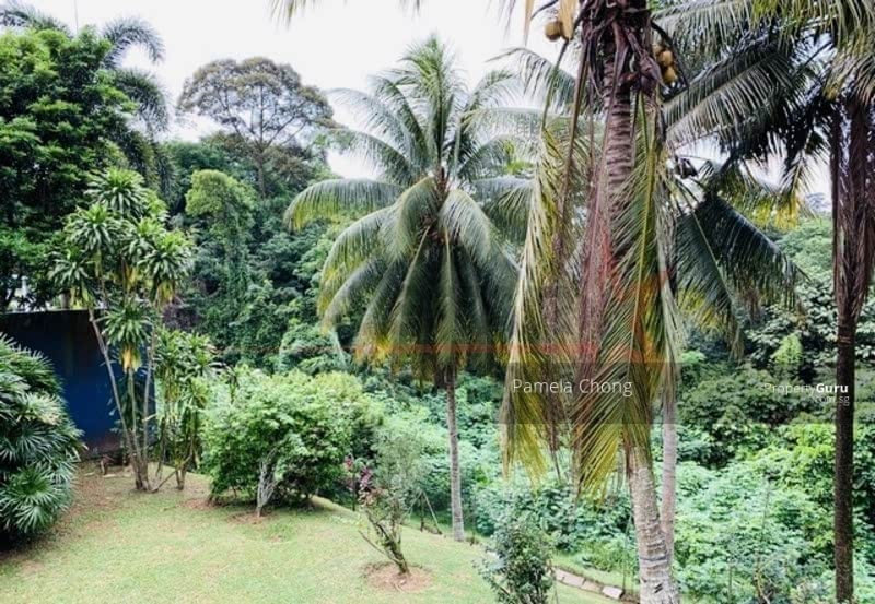 ⭐⭐PERCHED ON THE HILL A1 VIEW!⭐⭐ CHARMING HACIENDA @ KAP ON SPRAWLING GROUND (顶级优质洋房) #115721805