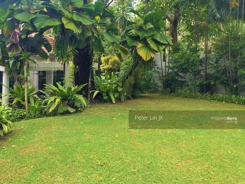 Quick! $1300psf! Almost Sold! Hilltop Resort! Elevated with Privacy! (顶级优质洋房) (9295-8888 祝您祝我, 发发发发) #126574191