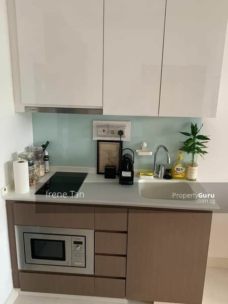 Kitchen induction cooker n oven
