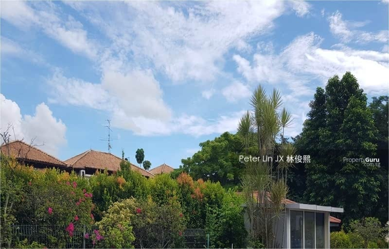Quick! Grab or Miss It! 30m Only! Walk to Botanic Gardens! Move In!! (顶级优质洋房) (9295-8888 祝您祝我, 发发发发) #122421487