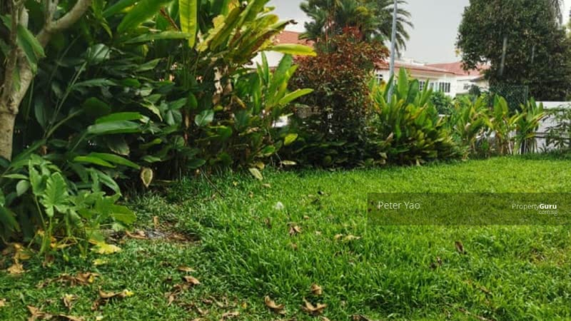 Rebuilder's Choice ! Holland Road Prominent GCB Land 43000 sft  Estimated #126669741