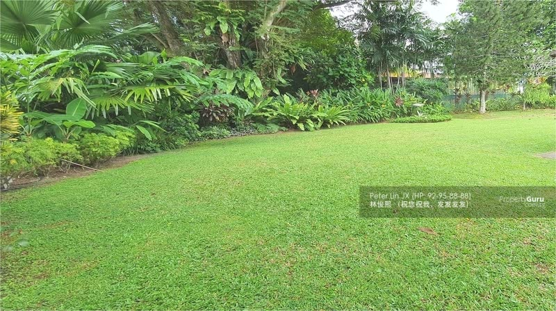 Wow! HILLTOP View! Elevated & Flat Land! Charming Move-in Condition! (顶级优质洋房)(9295-8888 祝您祝我, 发发发发) #126733615