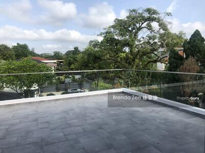 For Sale - Brand New Freehold 2. 5-storey Semi-Detached at Vanda Road