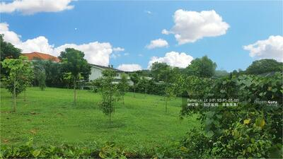 For Sale - Beautiful Greenery View! Timeless Charming Life Style! 1km MGS! Walk To MRT!  (9295-8888 祝您祝我, 发发发发)