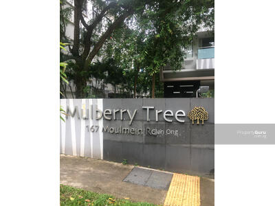 For Rent - Mulberry Tree