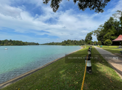 For Sale - D20 Wide Frontage very near Macritchie Reservoir Marymount Mrt