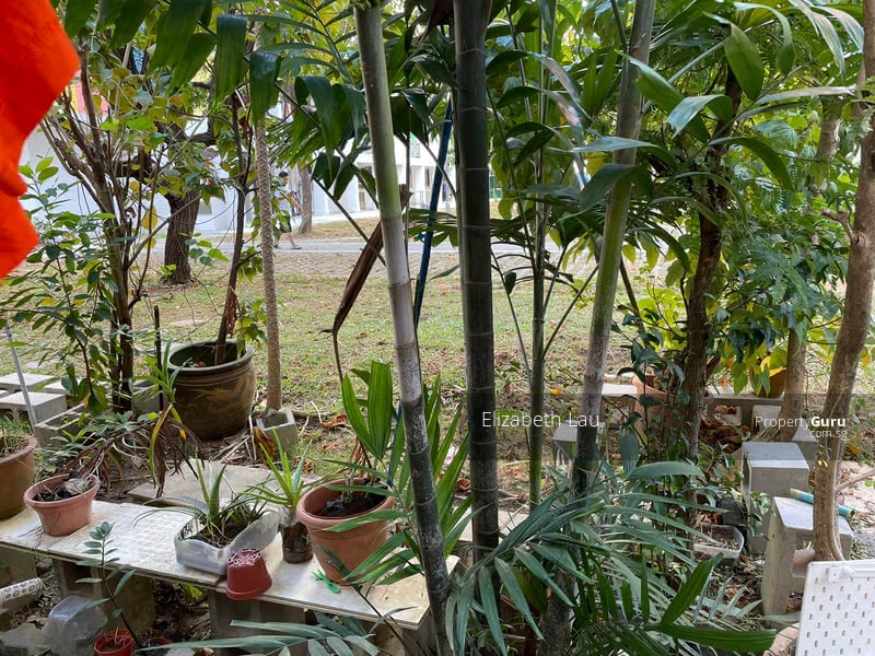 Back Access to ground floor outdoor garden