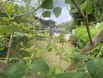 Semi D in Simei with beautiful Garden