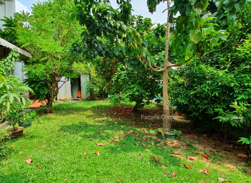 ⭐️SUBDIVISIBLE TO 2!ELEVATED 21.8M FRONT! CHARMING DETACHED ON REGULAR FLAT PLOT, CALL PAM  90228600 #128404617