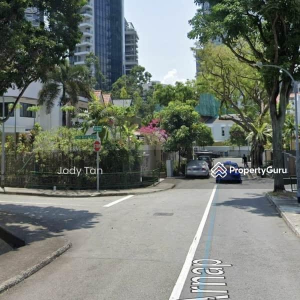 Jalan Arnap Brand New Semi D, Mins Walk To Orchard #128677439
