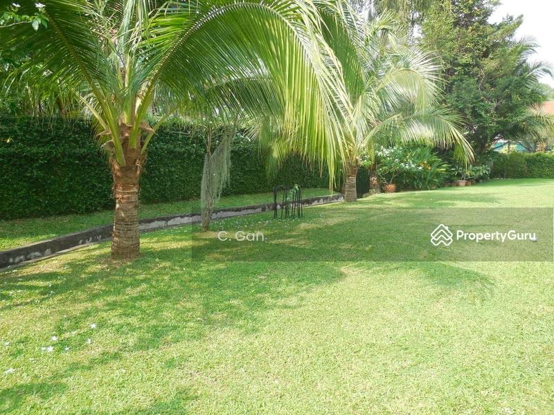 Botanical Garden Vicinity Bungalow #128708853
