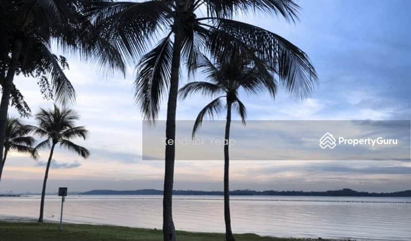Pasir Ris Terrace #128832199