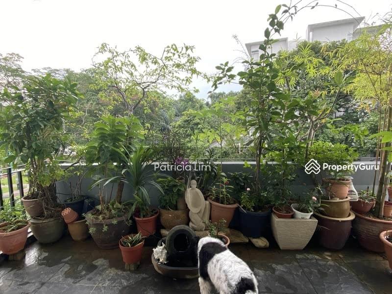 Unblock greenery