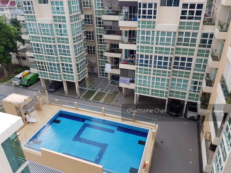 Swimming Pool view from your home