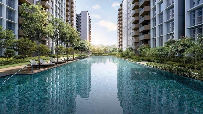 50m Oasis Pool