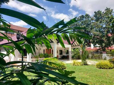For Sale - Chestnut Vicinity