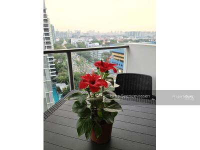For Sale - Gorgeous Unit for Sale at The Shore Residences! High Floor, Unblocked View!