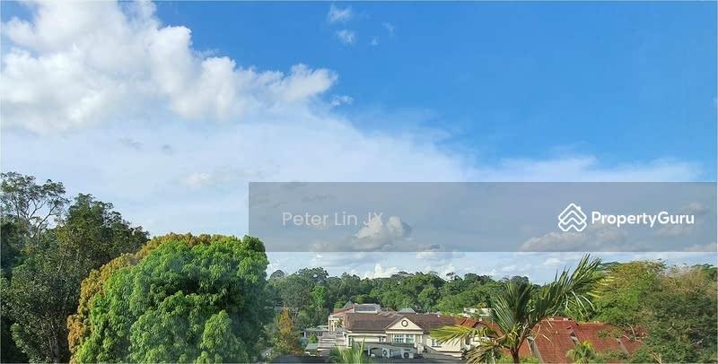 Nassim / Cluny / Botanic Gardens / Orchard!!! Perfect Tycoon Home!!! (顶级优质洋房)(9295-8888 祝您祝我, 发发发发) #130088387