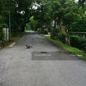 For Sale - ⭐ $21xx psf luxurious 2 storey Bungalow @ D11