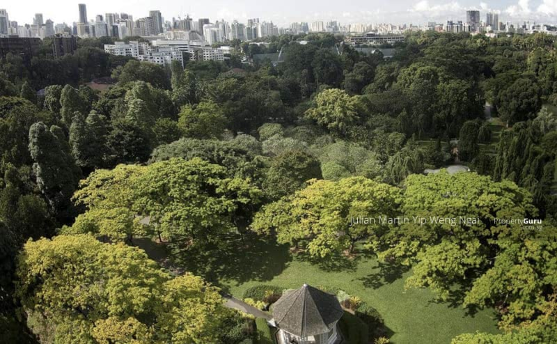 ⭐️Nassim Botanic Garden Mansion for Billionaires 亿万富翁植物园豪宅⭐️ #130804907
