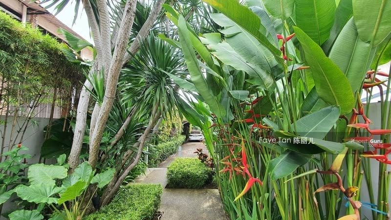 For Sale - Rosyth Road Bungalow With Pool Pk 5 Cars