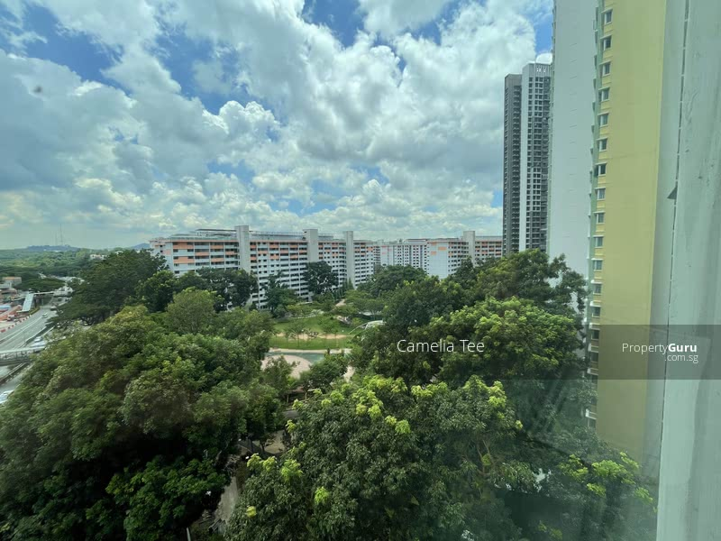Firefly Park view, Bukit Timah Hill view~~