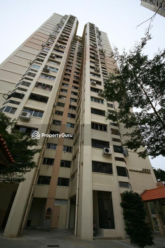 238 Jurong East Street 21 #0