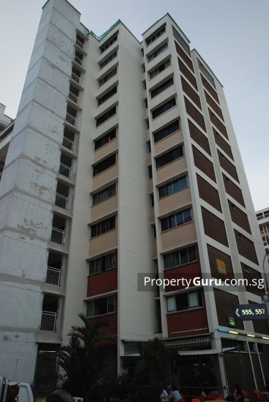 557 Jurong West Street 42 #0