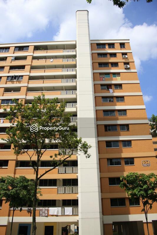 934 Jurong West Street 91 #0