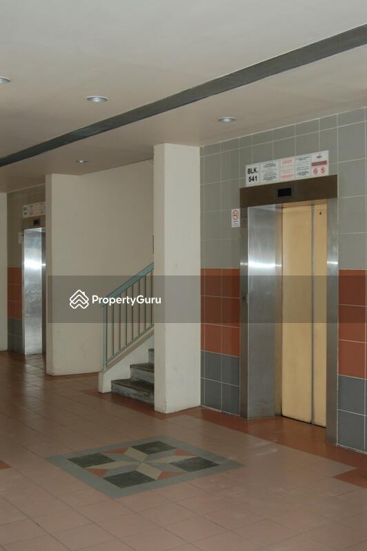 541 Pasir Ris Street 51 #0