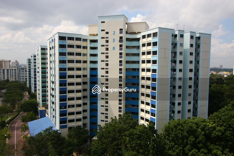 258 Serangoon Central Drive #0