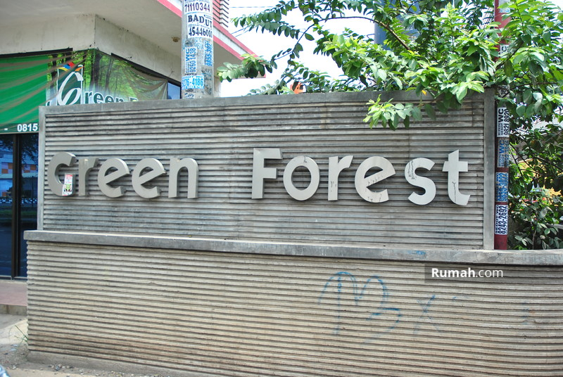 Green Forest #0