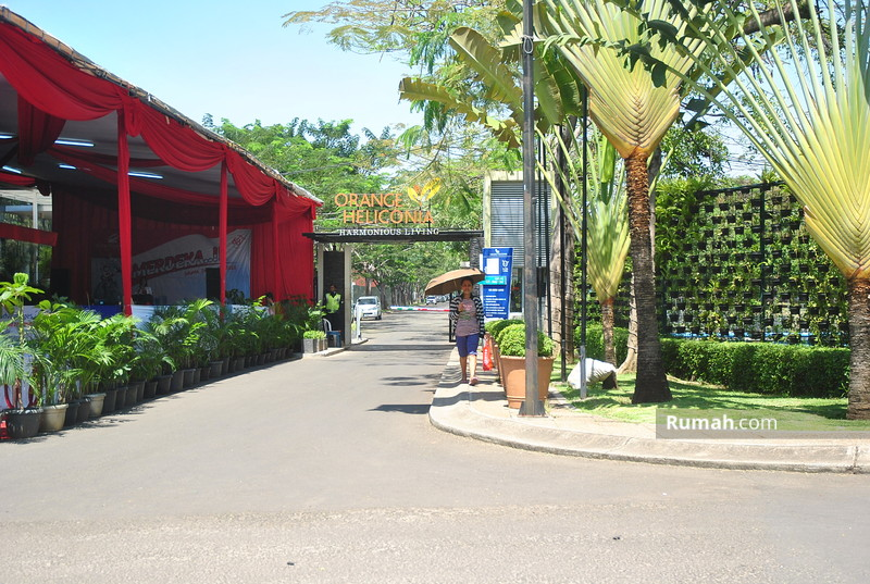 Citra Garden City 6 Cls Orange Heliconia #0