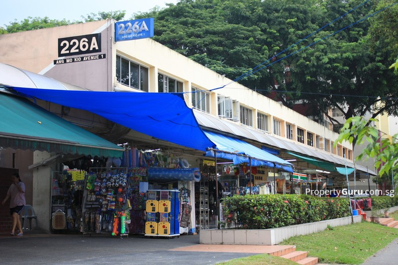 226A Ang Mo Kio Avenue 1 #0